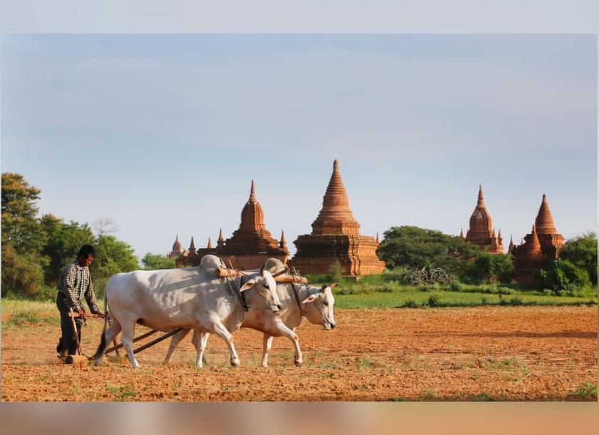 Myanmar tourism authorities are looking for to capitalize on recent tourism rebound and stimulate more investments in the tourism sector