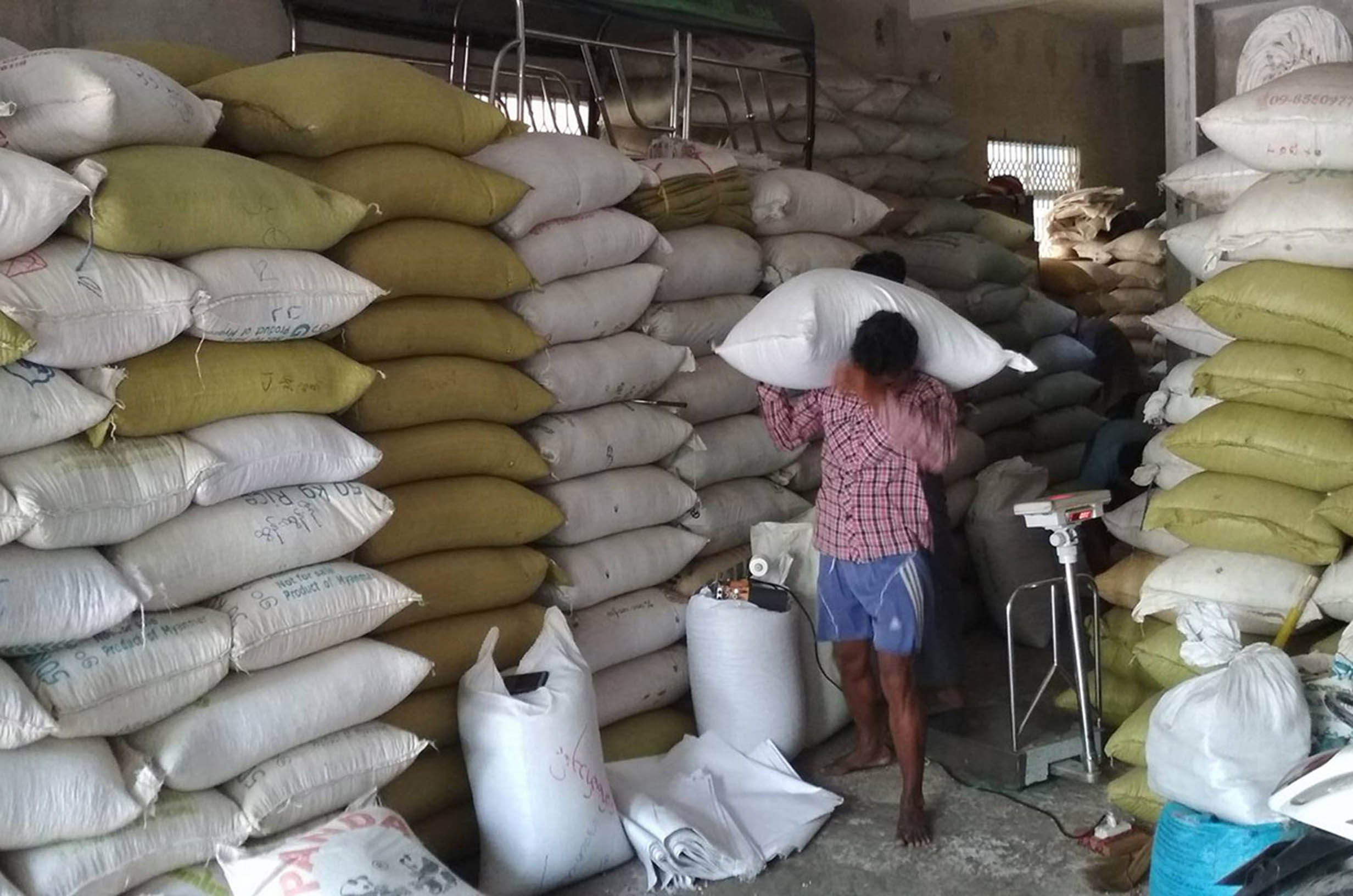 India's low demand on pluses and beans slashed black bean prices in domestic market