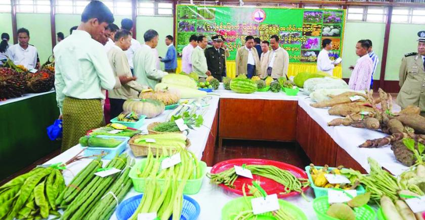 Myanmar Agriculture products export reached over USD $ 1.28 billion in first 5 months from February to October of 2018- 2019 fiscal year